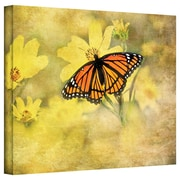 ArtWall 'Butterfly in Yellow' by David Liam Kyle Photographic Print on Canvas; 36'' H x 48'' W