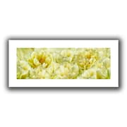 ArtWall 'Yellow' by Cora Niele Canvas Poster; 12'' H x 28'' W