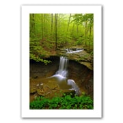 ArtWall 'Water Falls' by David Liam Kyle Photographic Print on Canvas; 36'' H x 24'' W