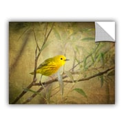 ArtWall Bird On Branch by David Kyle Art Appeelz Removable Wall Decal; 18'' H x 24'' W x 0.1'' D