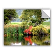ArtWall Santee Lakes by George Zucconi Art Appeelz Removable Wall Decal; 18'' H x 24'' W x 0.1'' D