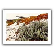 ArtWall 'Red Ice on Beach III' by Linda Parker Photographic Print on Canvas; 40'' H x 28'' W
