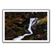 ArtWall Riverflow' by John Black Photographic Print on Rolled Canvas; 20'' H x 28'' W