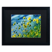 "Trademark Fine Art BC0141-B1620BMF ""Power in Flower"" by Beata Czyzowska Young 16"" x 20"" Framed Art, Black Matted"