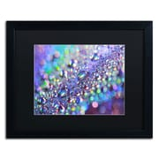 "Trademark Fine Art BC0117-B1620 ""Colours of Rainbow"" by Beata Czyzowska Young 16"" x 20"" Framed art"