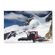 "Trademark Fine Art PSL0325-C1624GG ""Top of Switzerland"" by Philippe Sainte-Laudy 16"" x 24"" Frameless Art"