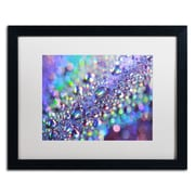 "Trademark Fine Art BC0117-B1620MF ""Colours of Rainbow"" by Beata Czyzowska Young 16"" x 20"" Framed art, White Matted"