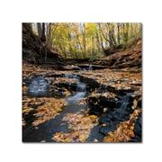 """Trademark Fine Art KS0140-C1818GG """"Lakeview Autumn Falls"""" by Kurt Shaffer 18"""" x 18"""" Frameless Art"""