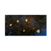 """Trademark Fine Art KS0147-C1224GG """"Autumn Leaves Floating By"""" by Kurt Shaffer 12"""" x 24"""" Frameless Art"""