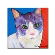"Trademark Fine Art PS128-C3535GG ""Nugget"" by Pat Saunders-White 35"" x 35"" Frameless Art"