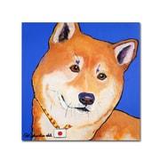 """Trademark Fine Art PS133-C1414GG """"Reborn"""" by Pat Saunders-White 14"""" x 14"""" Frameless Art"""