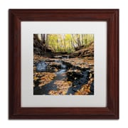 "Trademark Fine Art KS0140-W-MF ""Lakeview Autumn Falls"" by Kurt Shaffer Framed Art, White Matted"