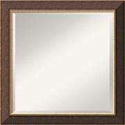 "Amanti Art Old World DSW1290265 Wall Mirror 24""H x 24""W,Brown"