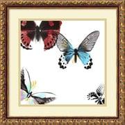 "Amanti Art DSW987920 ""Butterflies Dance III"" Framed Art Print 17.88"" H x 17.88"" W"