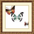 Amanti Art DSW987921 in.Butterflies Dance IIIin. Framed Art Print 17.88in. H x 17.88in. W