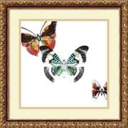 "Amanti Art DSW987921 ""Butterflies Dance III"" Framed Art Print 17.88"" H x 17.88"" W"