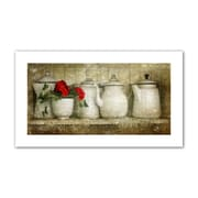 ArtWall ''Flower with Pots'' by David Liam Kyle Canvas Photographic Print; 28'' H x 52'' W