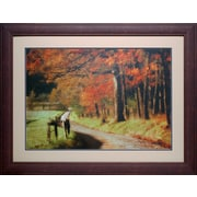 North American Art 'Autumn's Morning Light' by D. Burt Framed Painting Print
