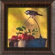 Ashton Wall D cor LLC Apples and Chickadees Framed Photographic Print