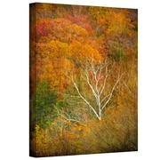 ArtWall In Autumn' by Antonio Raggio Photographic Print on Canvas; 18'' H x 12'' W