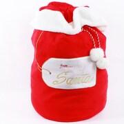 DEI From Santa Plush Gift Bag