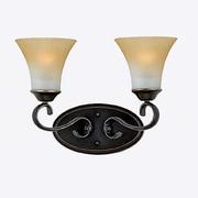Quoizel DH8602PN Incandescent Vanity Light, Palladian Bronze/Brown Shade