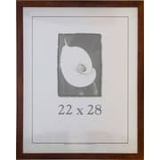 Frame USA Corporate Simple Frame for Matted Pictures; 22'' x 28''