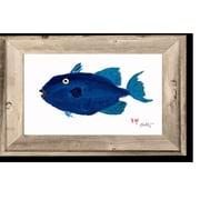 FishAye Trading Company 'Pompano' by JFD Framed Painting Print
