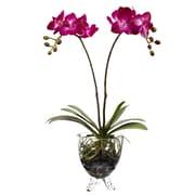 Nearly Natural Double Phalaenopsis Elegance Flowers