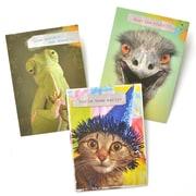 Gartner Greetings Pet Humor Greeting Cards, 3 pack, Birthday, Nobodies Watching