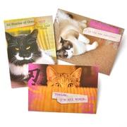 Gartner Greetings Pet Humor Greeting Cards, 3 pack, Birthday, Good Enough