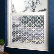 Odhams Press Fleur Sheer Window Film; 36'' x 48''