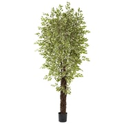 Nearly Natural 5431 Variegated Mini Ficus Green