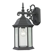 Cornerstone Lighting Spring Lake 1 Light Wall Lantern; Medium