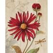 Yosemite Home Decor Revealed Artwork Crimson Blooms Graphic Art on Wrapped Canvas