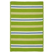 Colonial Mills Painter Stripe Garden Bright Indoor/Outdoor Area Rug; 5' x 7'