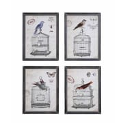 Creative Co-Op Wood and MDF Bird 4 Piece Graphic on Plaque Art Set (Set of 4)