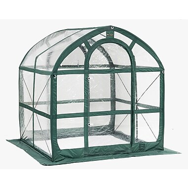 FlowerHouse 6' x 6' Spring House Clear Greenhouse