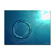 Ready2hangart Bubble Ring by Christopher Doherty Photographic Print on Wrapped Canvas