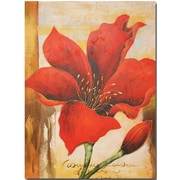 Quest Products Inc Flower Original Painting on Wrapped Canvas