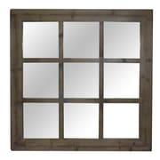Crestview Window Reflections Mirror