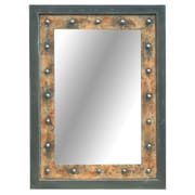 Crestview Rigid Reflections Mirror
