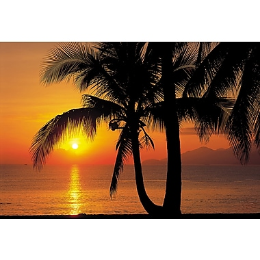 Komar Palmy Beach Sunrise Wall Mural, 100
