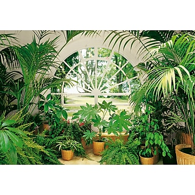 Ideal Decor – Mural Winter Garden, 144 x 100 po