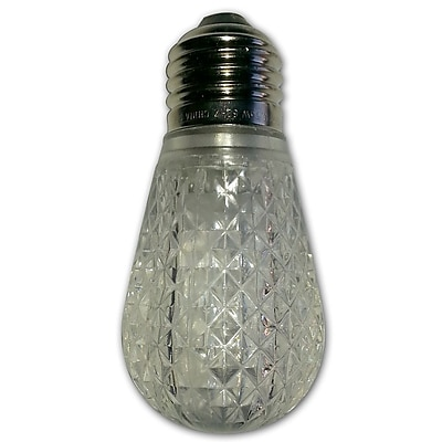 String Light Co 11W Warm White LED Light Bulb WYF078277599001