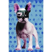 iCanvas Bulldog by Luz Graphics Graphic Art on Canvas in Blue; 26'' H x 18'' W x 0.75'' D