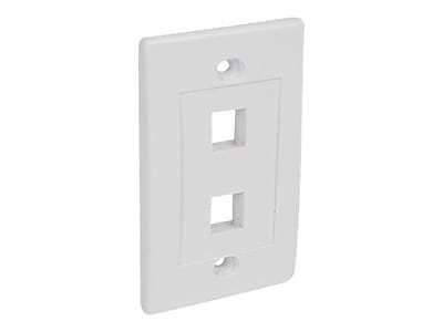 StarTech PLATE2WH Dual Outlet RJ45 Universal Wall Plate