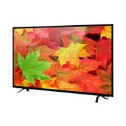 "Sansui® 3840 x 2160 SLED5516 55"" UHD LED-LCD Television"