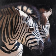 Portfolio Canvas 'Two Zebras' by P. Charles Framed Painting Print on Wrapped Canvas