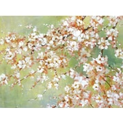 Portfolio Canvas 'Into the Cherry Blossom' by Bridges Framed Painting Print on Wrapped Canvas